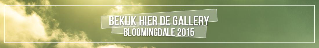 Bloomingdale 2015